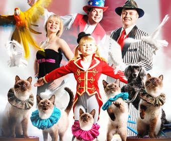 Check out Branson's Furriest Entertainment with Amazing Pets
