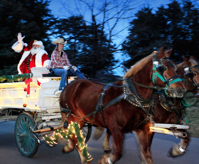 View the Christmas Lights from a Horse-Drawn Carriage