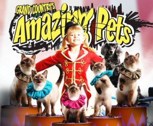 Amazing Pets of Grand Country Music Hall